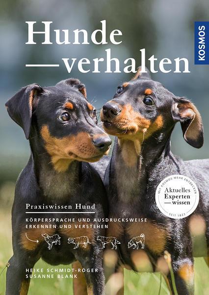 Hundeverhalten - Körpersprache und Ausdrucksweise erkennen und verstehen