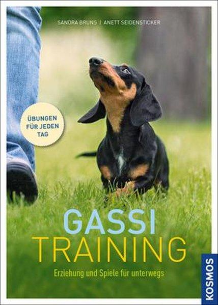 Gassi-Training - Hunde-Erziehung und Spiele für unterwegs