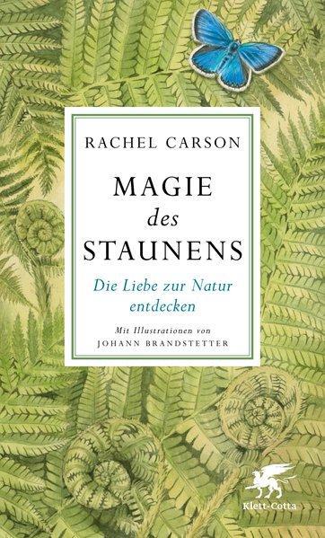 Magie des Staunens - Die Liebe zur Natur entdecken (Mängelexemplar)