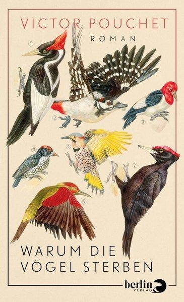 Warum die Vögel sterben - Roman (Mängelexemplar)