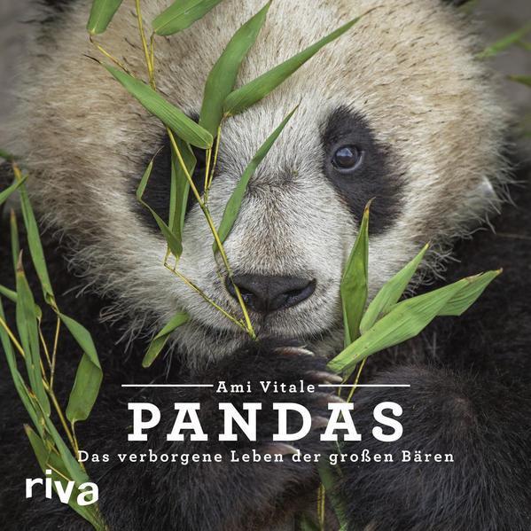 Pandas - Das verborgene Leben der großen Bären (Mängelexemplar)