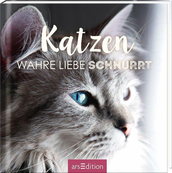Katzen- Wahre Liebe schnurrt